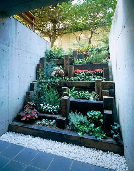 Kebun-indoor-sederhana